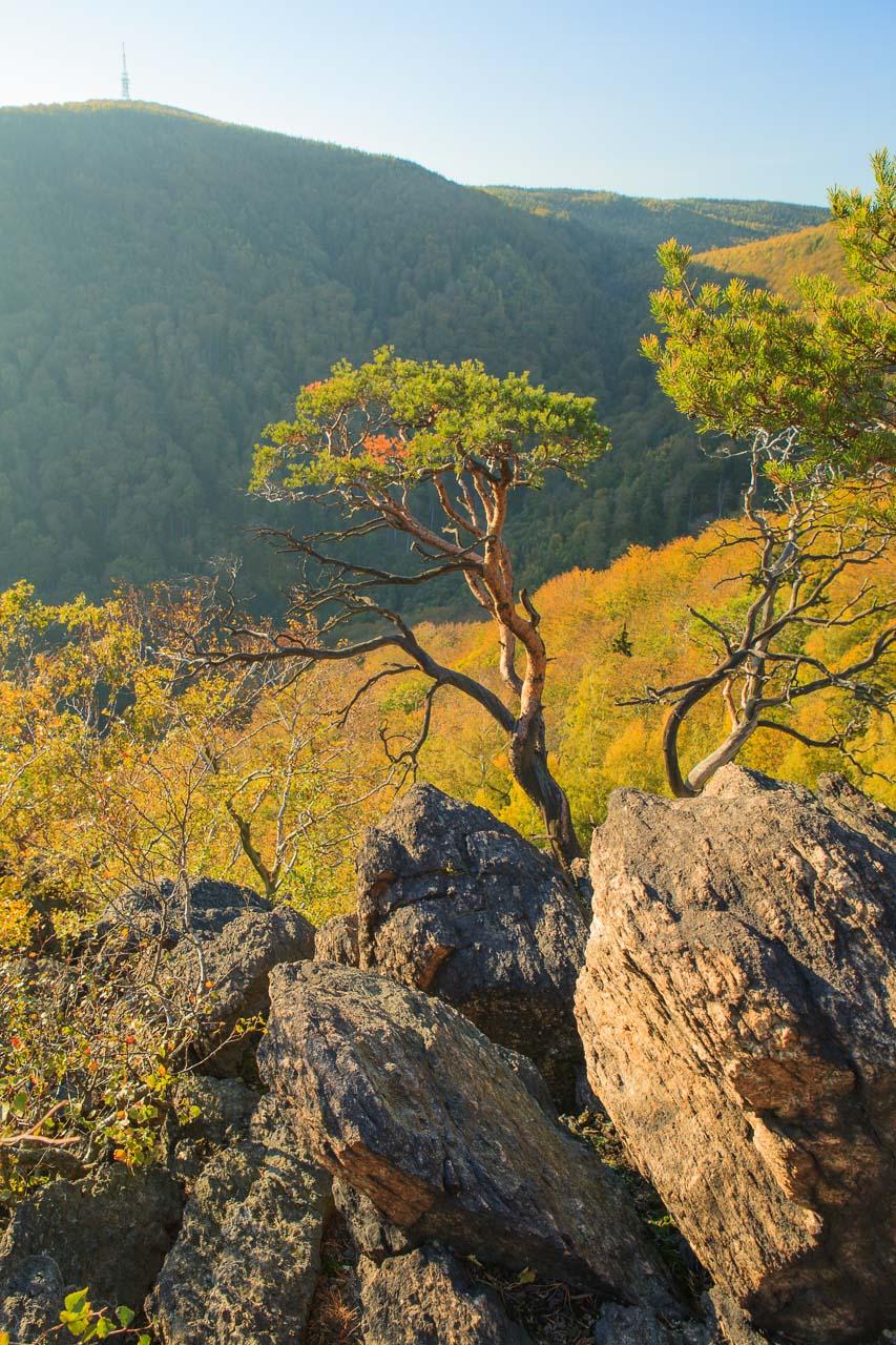 vyhlídka Starý Žeberk a pohled na Jedlák