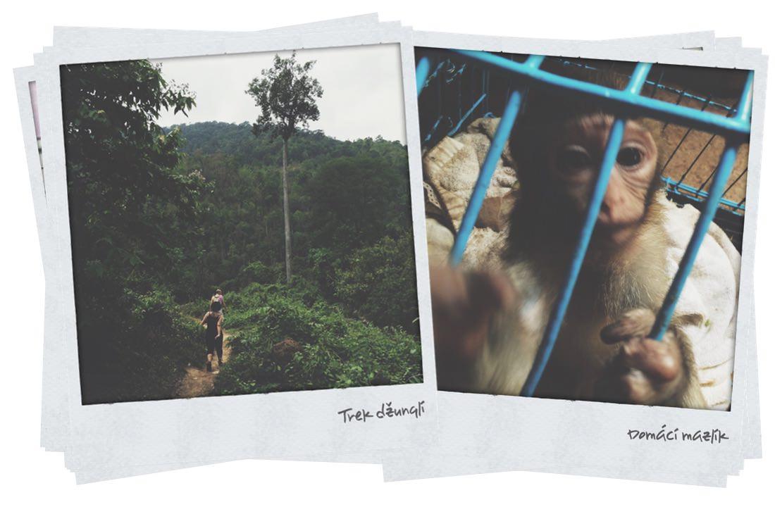 Thajsko Polaroid 9